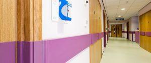 New Cross Hospital Protection Rail Wall & Door Protection